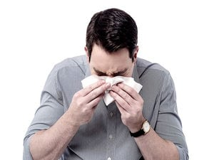 Scientists Are Targeting the Common Cold
